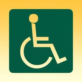 przewóz niepełnosprawnych w polsce