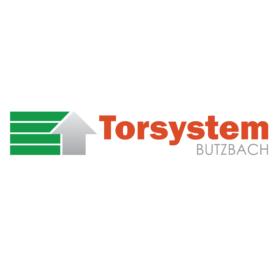 Torsystem logo